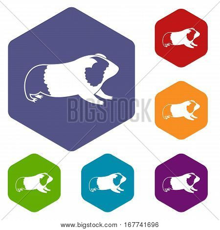 Hamster icons set rhombus in different colors isolated on white background