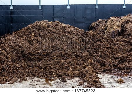 Raw Material From Animal Waste Used For The Production Of Biogas