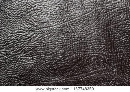 Black leather texture closeup background. Structured background design
