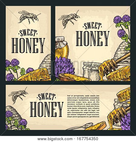 Set horizontal vertical and square and posters with honey honeycomb jar spoon bee. Isolated on the beige background. Vector color hand drawn vintage engraving illustration for label flyers menu