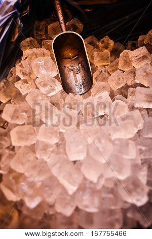 ice with scoop in ice bucket, preparation of ice in a bar for event party colours