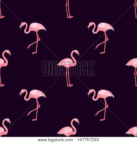 Flamingos seamless pattern. Vector background design with flamingo birds.