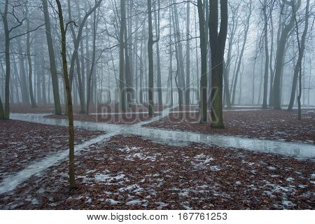 Foggy morning in the park in winter. On the ground, visible ice tracks and fallen leaves.