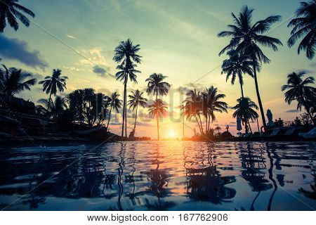 Tropical beach with pool and silhouetted palm trees during sunset.