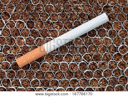 Close up one a cigarette against tobacco.