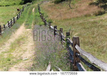 dirt road with primitive wood fencing on both sides