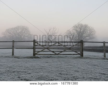 Five bar gate in a horse paddock on a frosty morning