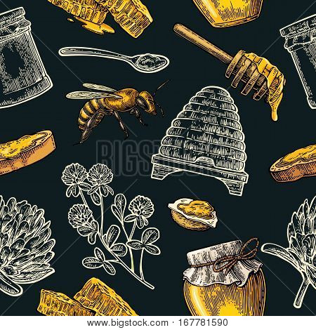 Seamless Pattern with honey bee hive clover spoon cracker bread and honeycomb. Vector vintage color engraved illustration. Isolated on dark background