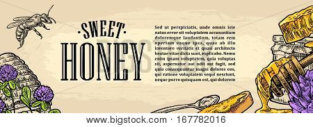 Square poster with honey honeycomb jar spoon bee. Isolated on the beige background. Vector color hand drawn vintage engraving illustration for label flyers menu