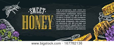 Horizontal poster with honey honeycomb jar spoon bee. Isolated on the dark background. Vector color hand drawn vintage engraving illustration for label flyers menu