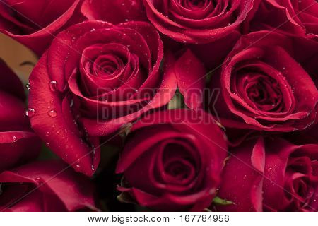 Bouquet of Red Roses for Mother's Day or Valentine's as a loving gift