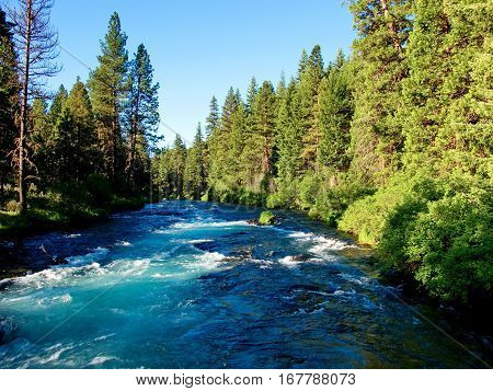 The beautiful waters of Wizard Falls on the Metolius River in Central Oregon with lots of greenery on its banks on a summer day.
