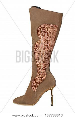 Women brown knee-high leathers boot isolated on white background.