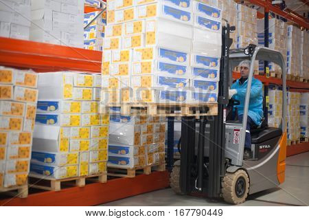 SHUCHIN BELARUS - JANUARY 26 2015. Worker driver of a forklift loader at warehouse with cardboard boxes on pallet.