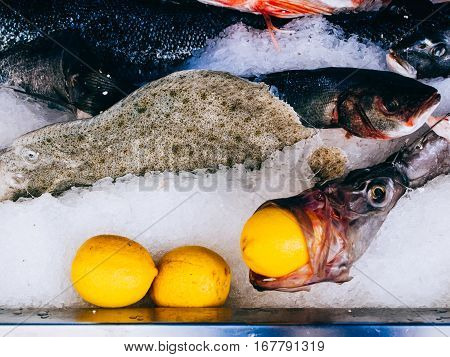 Fresh Seafood Arrangement In Market