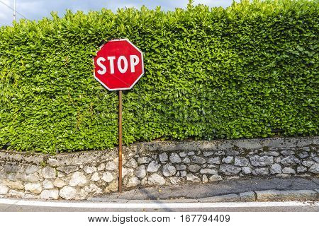 Red hexagonal Stop sign on metal pole in rural road next to crossroad. Green leaves pattern on the background