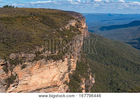 Blue Mountains Landscape Of Mountains And Eucalyptus Forest