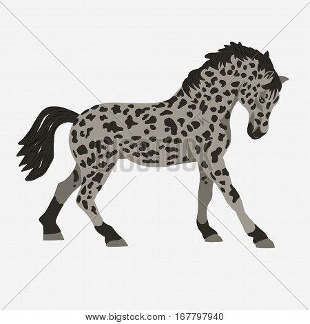 Horse profile on a white background, graphic logo template. Horse for stable, farm, race emblem. vector