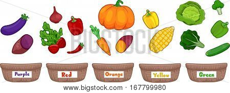 Colorful Illustration Featuring Fruits and Vegetables Sorted According to Color