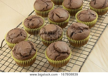 Batch of sugarless chocolate chop chocolate muffins on cooling rack
