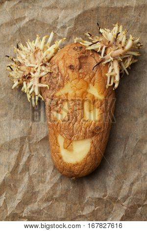 Rotten potato with smiling cartoon face on paper background