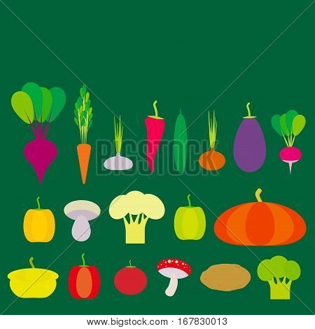Set of vegetables bell peppers pumpkin beets carrots eggplant red hot peppers cauliflower broccoli potatoes mushrooms cucumber onion garlic tomato radish on green background. Vector illustration