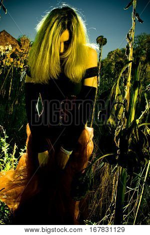 young beautiful woman in a field of withered sunflowers