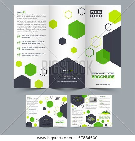 Creative Professional Three Fold Brochure layout with front and back page view for Business presentation.