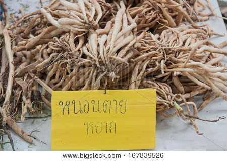 Thailand language text on the label is the name of the herb, Thailand. When translated into English, is