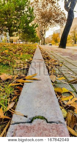 Diminishing Perspective View Of A Pavement In A Park