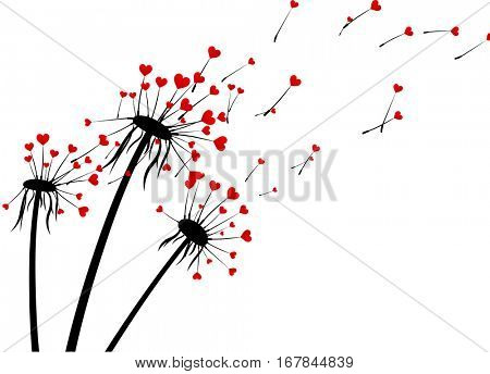 White Valentine's background with love dandelions with hearts. Vector illustration.