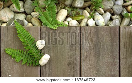 Fern And Pebble Stone On Wood Floor Texture Natural Background