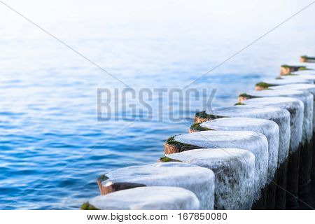 Row of frozen wooden posts in winter at Baltic Sea (copy space)
