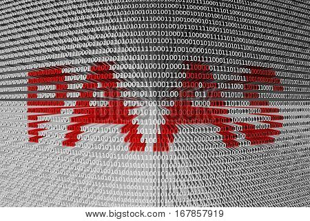 paas in the form of binary code, 3D illustration