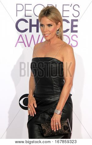 LOS ANGELES - JAN 18:  Cheryl Hines at the People's Choice Awards 2017 at Microsoft Theater on January 18, 2017 in Los Angeles, CA