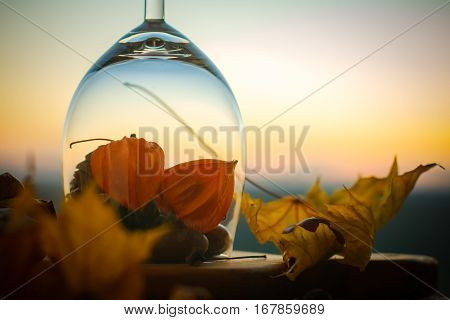 Autumn glas with maple leaf throuth sunset