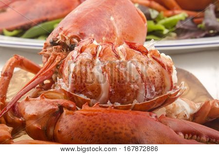 freshly cooked red lobster on a wooden board
