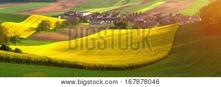 Spring agricultural landscape. Warm sun shines on yellow fields of colza. Beautiful farm on field in morning sunbeams. Spring panoramic landscape. Bright rural scene.