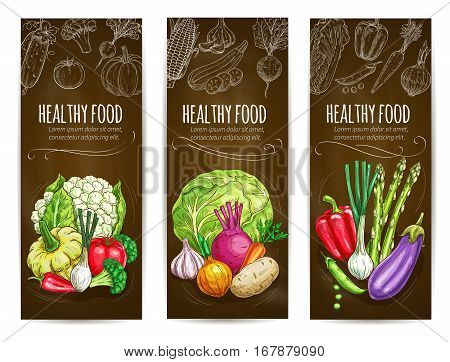 Healthy food vegetables banners. Chalk sketch vegetables cauliflower, squash, bell and chili pepper, tomato and leek, broccoli cabbage, onion and potato, garlic, beet and carrot, asparagus, eggplant and green peas. Vector vegetables chalkboard