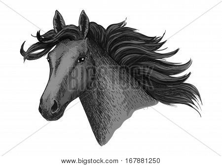 Horse head. Vector symbol of mustang or mare with waving mane for horse races or racing. Stallion sketch for equine animal riding contest or exhibition, equestrian horserace sport club poster