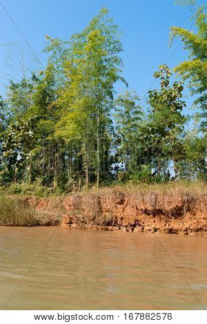 Bank of the river with yellow water. Clay rocks, the trees on the river bank.