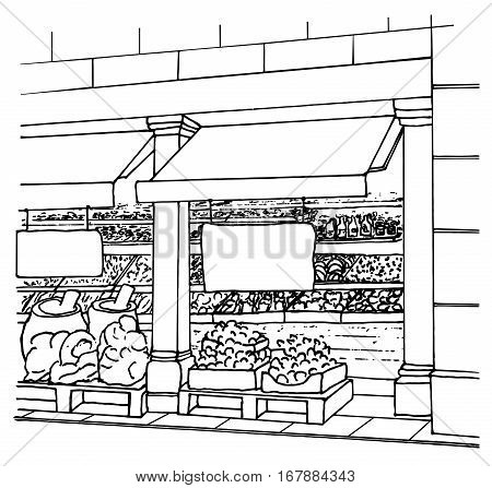 Local Shop entrance with fresh fruits and vegetables in boxes. Supermarket aisle. Farmers market. Village market. Street market. Sketch. Vector
