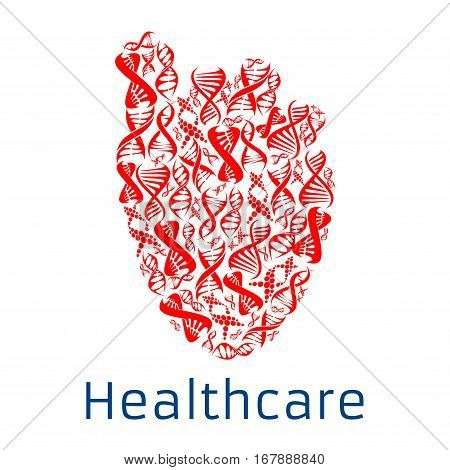 Heart shape symbol combined of human DNA helix. Healthcare poster with red human heart with spiral gene cell design for cardiology healthcare, health clinic or hospital, genetics and microbiology research