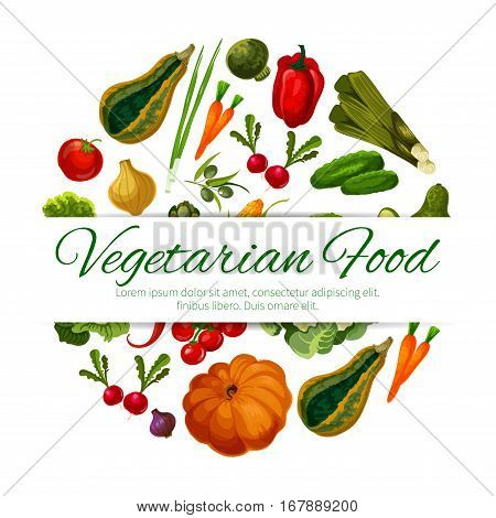 Veggies and vegetables poster. Vegetarian greens food of squash, onion and leek, pumpkin, corn and cabbage with carrot, bell and chili pepper, radish and cucumber, cauliflower and broccoli, tomato and olives. Vector farm fresh ripe vegetable harvest