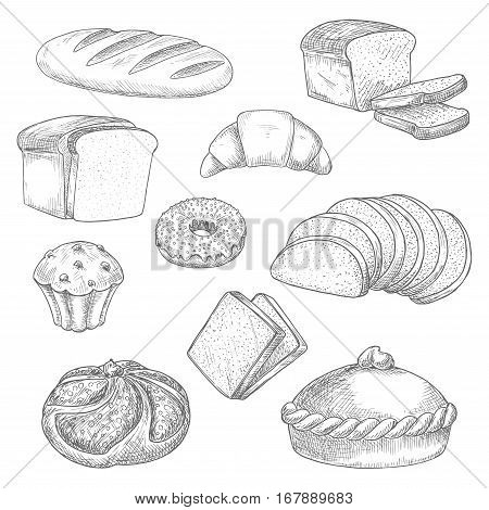 Bread sketch vector isolated icons of wheat bread loaf, rye brick or bagel, crunch pie or cake, sweet croissant, chocolate muffin and glazed donut or cupcake dessert, sliced wheat bread toasts. Design for bakery, baker shop, patisserie