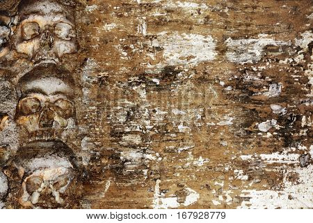 Grunge Halloween background with human skulls and stucco texture of brown color poster