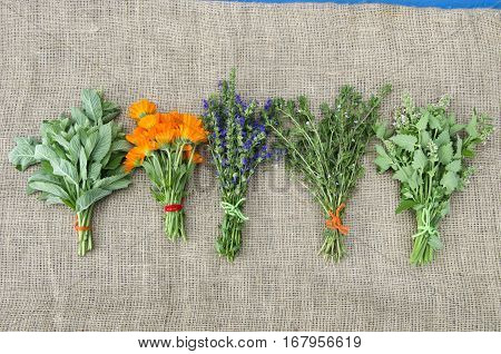 five medical healthy herbs flowers bunch on linen cloth