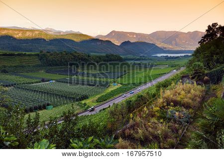 Scenic View Of Vineyards And Apple Orchards Near Kaltern Town At The South Tyrolean Wine Route