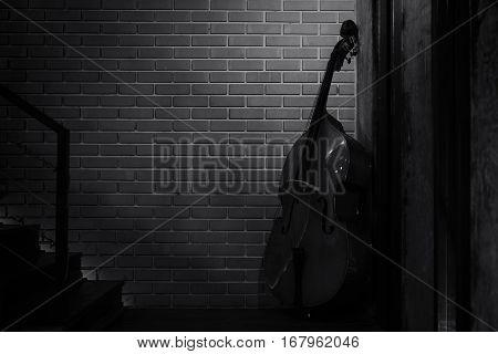 Cello Decorated Near Brick Wall
