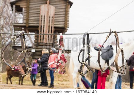 Reins For Horses Are Hanging On The Rope